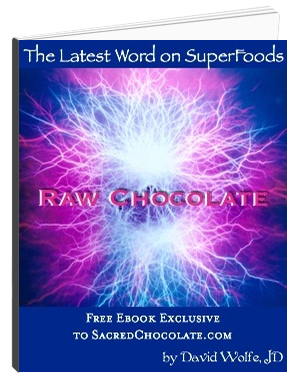 Raw Chocolate Ebook David Wolfe Sacred Chocolate