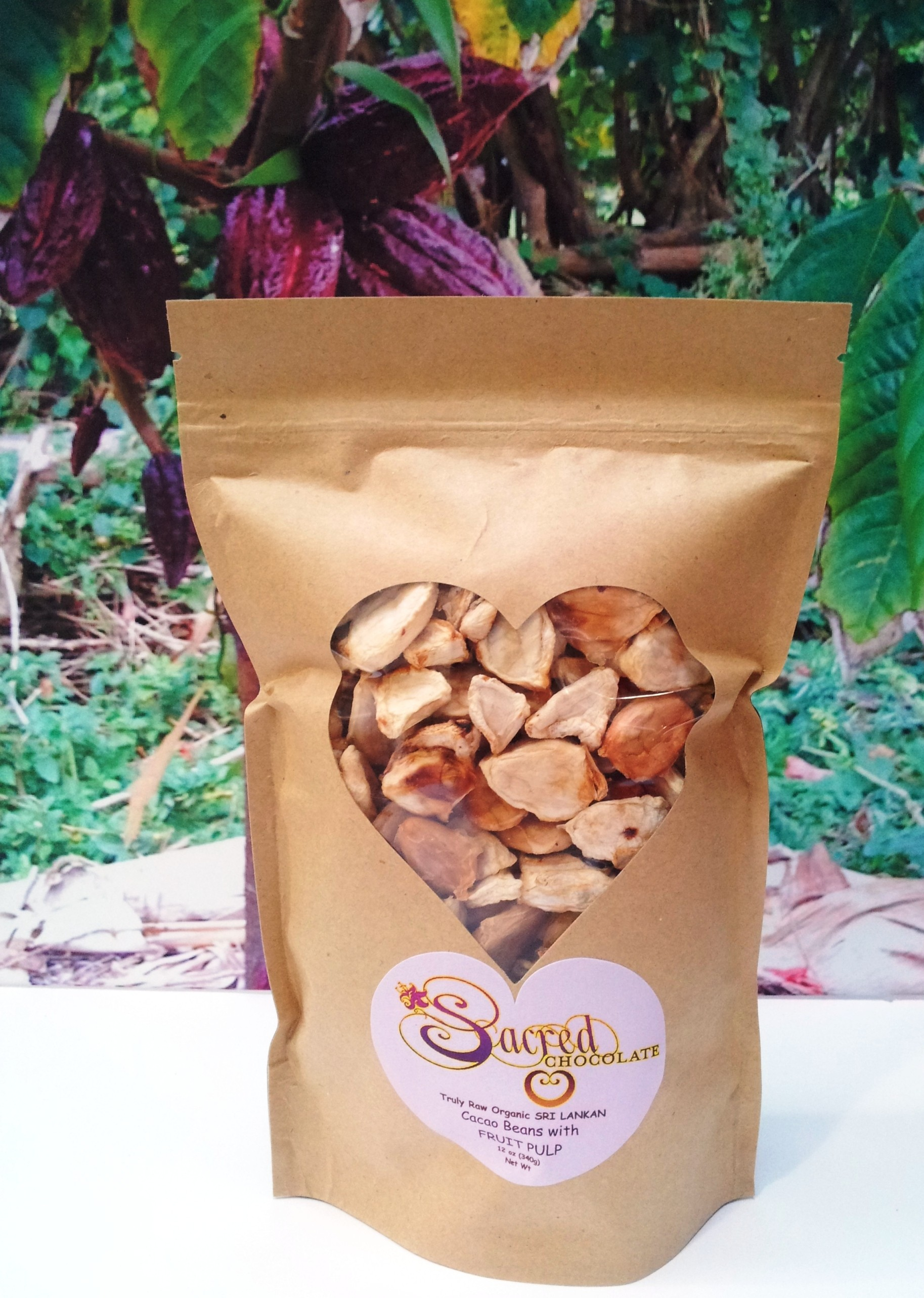 Fruit Pulp Covered Raw Cacao Beans from Sri Lanka