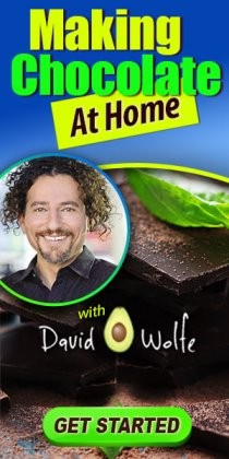 "Making Raw Chocolate at Home with David ""Avocado"" Wolfe"